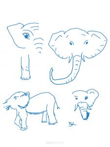 Elephant parts